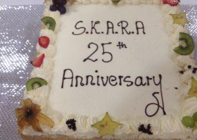 Photo-SKARA-Cake on its own